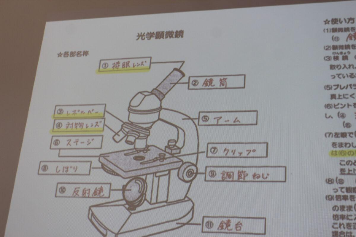 顕微鏡 名称